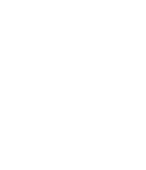 Melior Project